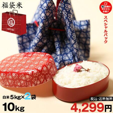 【福袋米スペシャルパック】白米5kg×2袋【令和元年:滋賀県産】【送料無料】