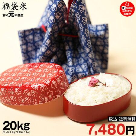 新米!【令和元年:滋賀県産】【福袋20】玄米のまま20kgもしくは精米済み白米20kg【送料無料】1種類でのお届けとなります♪