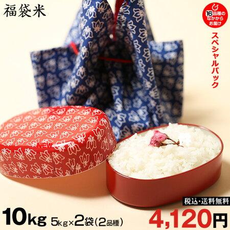 新米!【令和元年:滋賀県産】【福袋米スペシャルパック】白米5kg×2袋【送料無料】