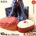 【福袋米 スペシャルパック】 白米5kg×2袋 【令和元年:滋賀県産】 【送料無料】