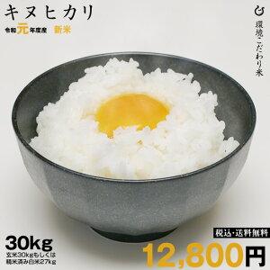 キヌヒカリ 環境こだわり米 玄米のまま 30kgまたは精米済み白米 27kg  【令和元年:滋賀県産】【送料無料】