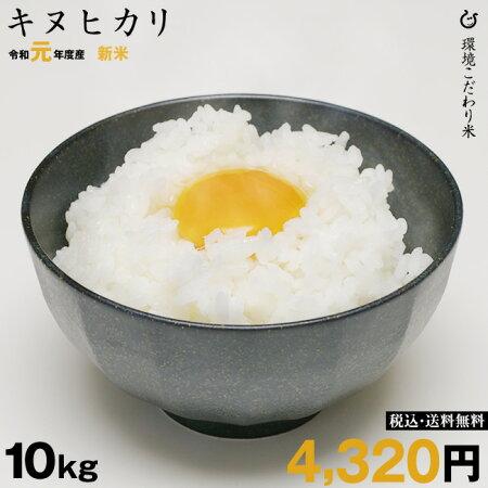 新米!【令和元年:滋賀県産】キヌヒカリ10kg環境こだわり米【送料無料】あす楽対応♪