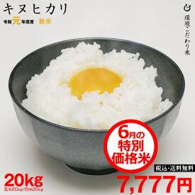 【6月の特別米】キヌヒカリ 環境こだわり米 玄米のまま 20kgもしくは精米済み白米20kg【令和元年:滋賀県産】【送料無料】
