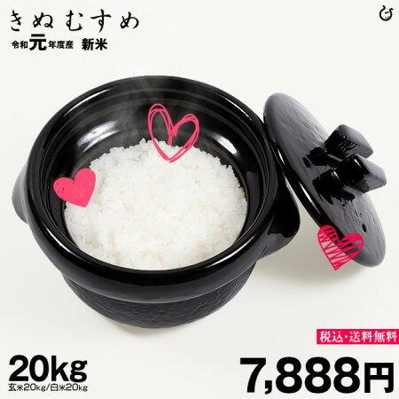 きぬむすめ環境こだわり米玄米のまま20kgもしくは精米済み白米20kg【令和元年:滋賀県産】