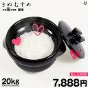 きぬむすめ 環境こだわり米 玄米のまま20kgもしくは精米済み白米20kg【令和元年:滋賀県産】
