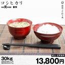 特A コシヒカリ 環境こだわり米 玄米のまま30kgもしくは精米済白米27kg 令和元年 滋賀県産 送料無料