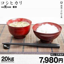 特A コシヒカリ 環境こだわり米 玄米のまま20kgまたは精米済み白米20kg 令和元年 滋賀県産 送料無料
