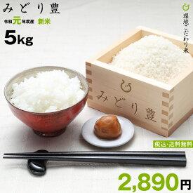 新米!【令和元年:滋賀県産】みどり豊 環境こだわり米 5kg