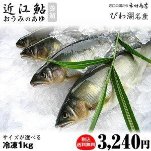 冷凍鮎 【近江鮎】 1kg【びわ湖名産】