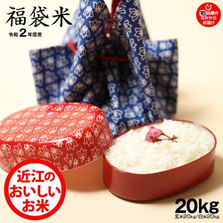 【福袋20】玄米のまま20kgもしくは精米済み白米20kg【令和元年:滋賀県産】【送料無料】1種類でのお届けとなります♪