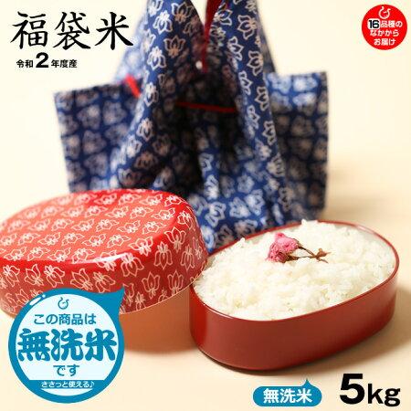 【福袋米】白米5kg【令和元年:滋賀県産】【送料無料】