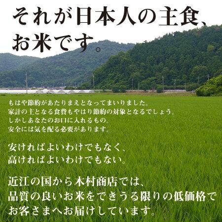 【3月の特別米】★★無洗米★★ヒノヒカリ10kg【令和2年:滋賀県産】