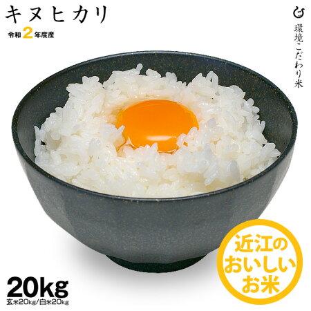 【新米】キヌヒカリ環境こだわり米玄米のまま20kgもしくは精米済み白米20kg【令和2年:滋賀県産】【送料無料】