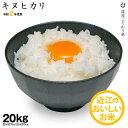 【新米】キヌヒカリ 環境こだわり米 玄米のまま 20kgもしくは精米済み白米20kg【令和2年:滋賀県産】【送料無料】