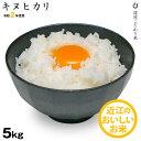 【新米】キヌヒカリ 環境こだわり米 5kg 【令和2年:滋賀県産】【送料無料】