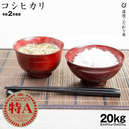 特Aコシヒカリ環境こだわり米玄米のまま20kgまたは精米済み白米20kg令和元年滋賀県産送料無料