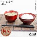 【新米】【11月の特別米】 コシヒカリ 環境こだわり米 玄米のまま20kgまたは精米済み白米20kg 令和2年 滋賀県産 送料無料
