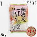 【新米】 無洗米 コシヒカリ 5kg 令和2年 滋賀県産 送料無料