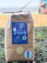 ★★無洗米★★ みずかがみ 3kg 環境こだわり米 【令和2年:滋賀県産】【送料無料】
