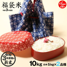 【新米!】【福袋米 スペシャルパック】 白米5kg×2袋 【令和3年:滋賀県産】 【送料無料】2品種でのお届けとなります