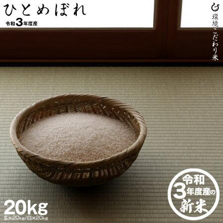 【新米!】ひとめぼれ環境こだわり米玄米のまま20Kgもしくは精米済み白米20Kg【令和3年:滋賀県産】【送料無料】