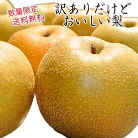 【送料無料】【数量限定】【訳あり】 長野県産 梨 約5kg 8玉〜20玉