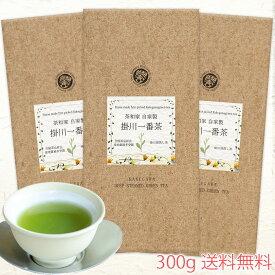産地賞受賞 茶和家 自家製 掛川一番茶 300g 送料無料 深蒸し茶