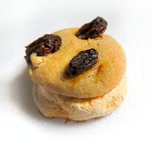 『とけるクッキー』 バターレーズンクッキー 焼き菓子 レーズン バター 焼菓子 メレンゲクッキー スイーツ サクホロクッキー おいしい お菓子 ほろほろ 美味しい メレンゲ 柔らかい 美味し