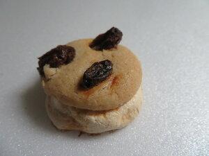 とけるクッキー。バターレーズン。フレンチメレンゲの上にバターのサクホロクッキとレーズンーを合わせました。クッキー 焼き菓子 お菓子 スイーツ レーズン ほろほろ 美味しいお菓子 お