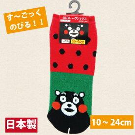 【日本製・くまモンのび〜るくつ下・10-24cm・スイカ】くまモン くつ下・ソックス・靴下・くつした・靴した・男女兼用・男性用・女性用・こども用・子ども用・子供用・大人用・おとな用・くまモン・熊本・土産・お土産・ご当地・ご当地ソックス・くつ下・西瓜