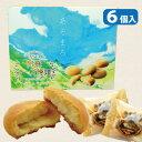 楽天市場 熊本土産 菓子 阿蘇の玄関キムチの里
