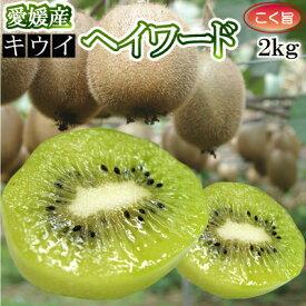 【12月中旬発送】愛媛県産キウイフルーツ2kg (精品)(品種:ヘイワード)