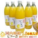 ビター、キレ味の良い大人ジュース。焼酎割り!濃厚100%果汁 愛媛河内晩柑ストレートジュース6本(1本1000mlx6) 完熟のみごろ