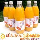 甘み濃厚/濃厚100%果汁 愛媛ぽんかんストレートジュース6本 (1本1000mlx6) 完熟のみごろ