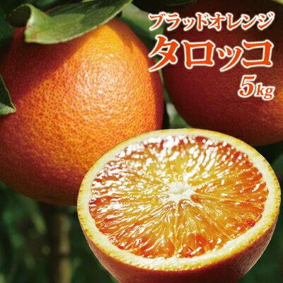 3月末発送開始 愛媛産タロッコ5kg(ブラッドオレンジ)(精品:M〜3Lサイズ込み)【送料無料(北海道沖縄送料別途)】アントシアニンの赤み、コクのある生食向きの品種です。