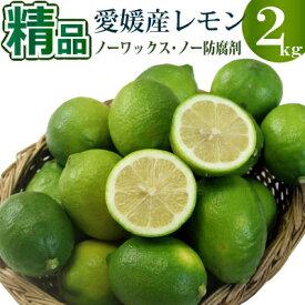 【10月中旬入荷予定】愛媛県産グリーンレモン2kg 精品