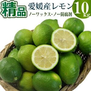 愛媛県産グリーンレモン10kg 精品 多少スリ傷などあります。