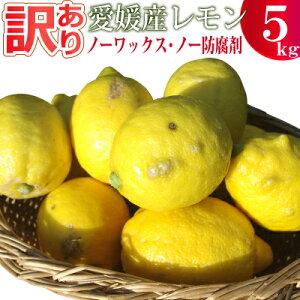 愛媛産訳ありレモン5キロ【ノーワックス】【ノー防腐剤】