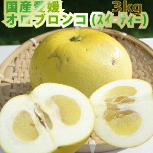 【5月8日より順次発送】愛媛産 家庭用オロブロンコ3kg(別名スィーティー)