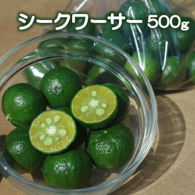 愛媛産シークヮーサー500g 酸味が強い香酸柑橘です。すだちなどの様にして搾るなどしてお使い下さい。