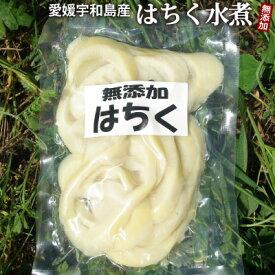 【新物入荷】愛媛県産ハチク水煮 容量180g 柑橘類に同梱できる!無漂白/薬品不使用