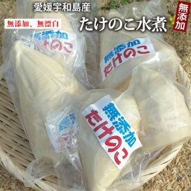 【令和3年産】愛媛県産たけのこホール水煮1kg(約3〜6袋) ●常温発送、到着後は冷蔵保管をお願いします。孟宗竹/無漂白/薬品不使用