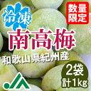 氷梅 冷凍南高梅(梅酒用・梅ジュース用) 1kg(500g×2袋) ☆和歌山県紀州産青梅 冷凍梅