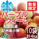 氷梅 冷凍パープルクィーン(梅酒・梅ジュース用) 400g 10袋 ☆和歌山県紀州産青梅 小梅 冷凍梅 パープルクイーン