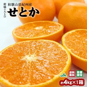 【送料無料】せとか 約4kg(20〜24玉入) 1箱 ★柑橘の大トロ 和歌山県紀州産 木熟みかん