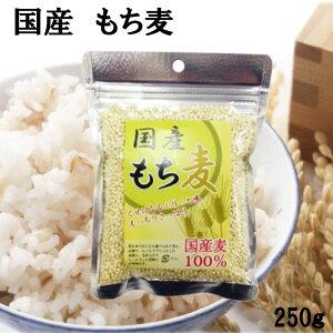 国産 もち麦 100% 脱メタボ 食物繊維 食品 もち麦 250g ムギ ダイエット デブ菌 水溶性食物繊維 国産麦100%