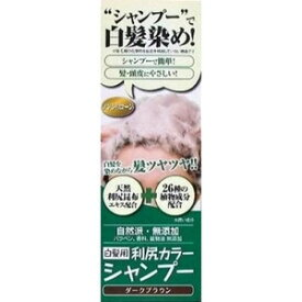 利尻昆布 カラーシャンプー (シャンプー・染毛料) 【ダークブラウン】 《白髪用》 200g