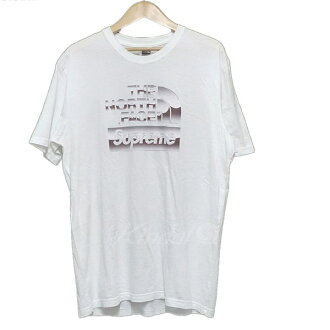 5232b7fd7 THE NORTH FACE X SUPREME 2018SS MATALLIC LOGO TEE T-shirt white size: M  (the North Face X シュプリーム)