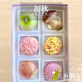 【 初秋 】6個入 高級 上生菓子 練り切り 期間限定 お取り寄せ 個包装 送料無料