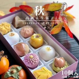 【 秋 】10個入 高級 上生菓子 練り切り 期間限定 お取り寄せ 個包装 送料無料
